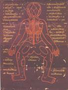 fondamenti massaggio thailandese sul lettino