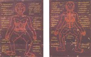 tecnica massaggio thailandese