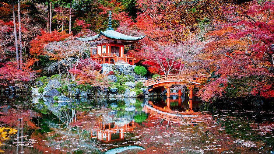 corso massaggio giapponese estetica e benessere