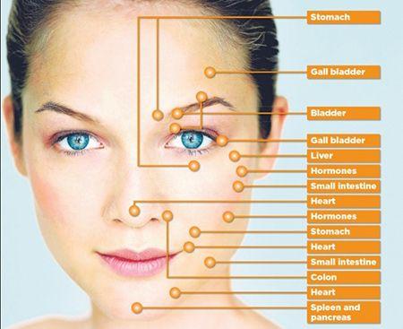 programma del corso di massaggio connettivale del viso